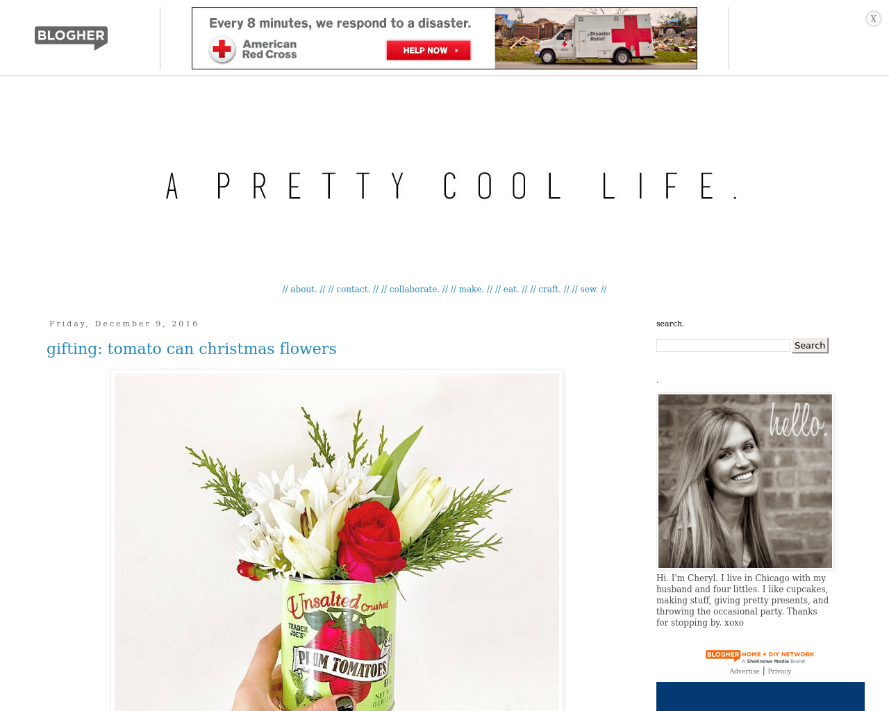 A-Pretty-Cool-Life-Advertising-Reviews-Pricing