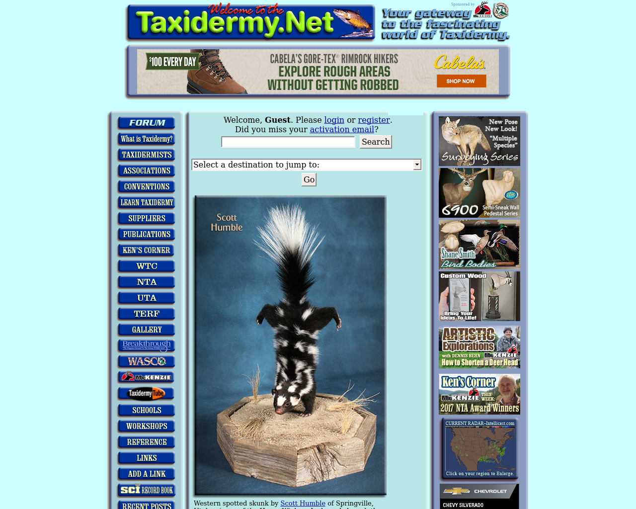 Taxidermy-Net-Advertising-Reviews-Pricing