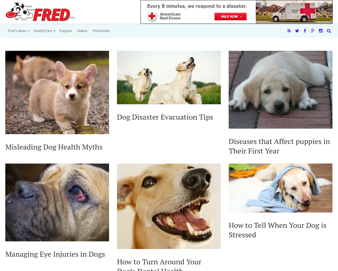 Catchfred-Advertising-Reviews-Pricing