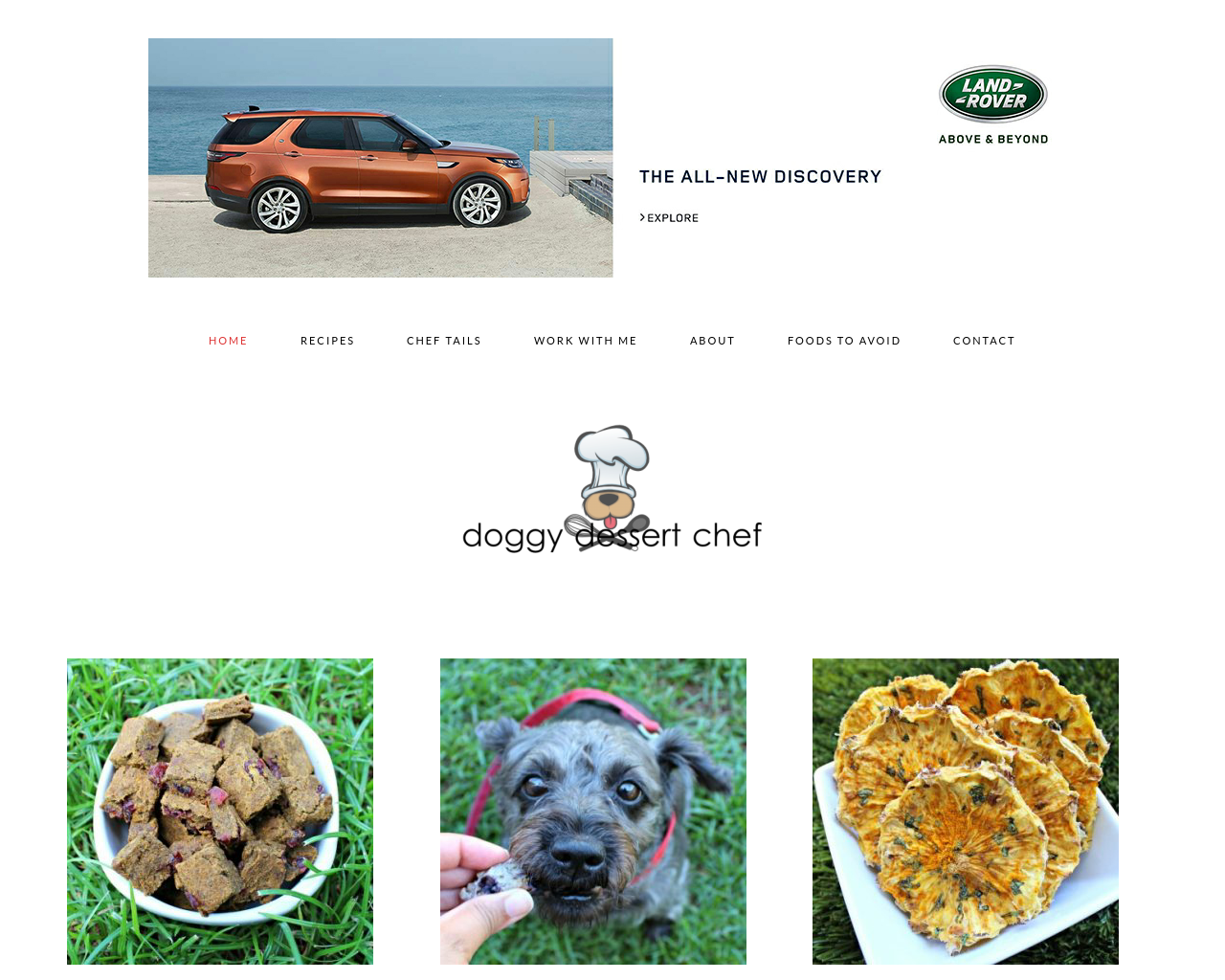 Doggy-Dessert-Chef-Advertising-Reviews-Pricing