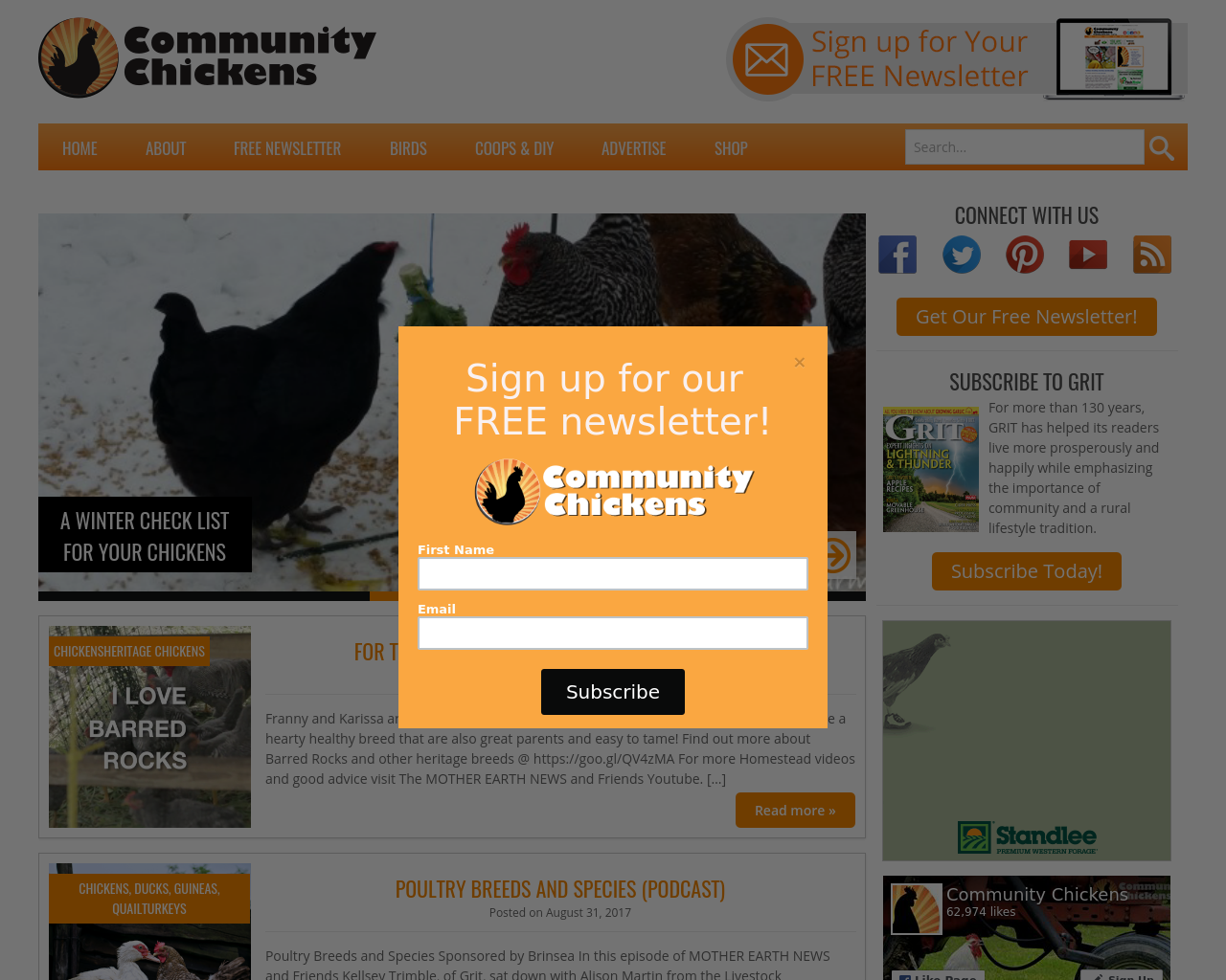 Community-Chickens-Advertising-Reviews-Pricing