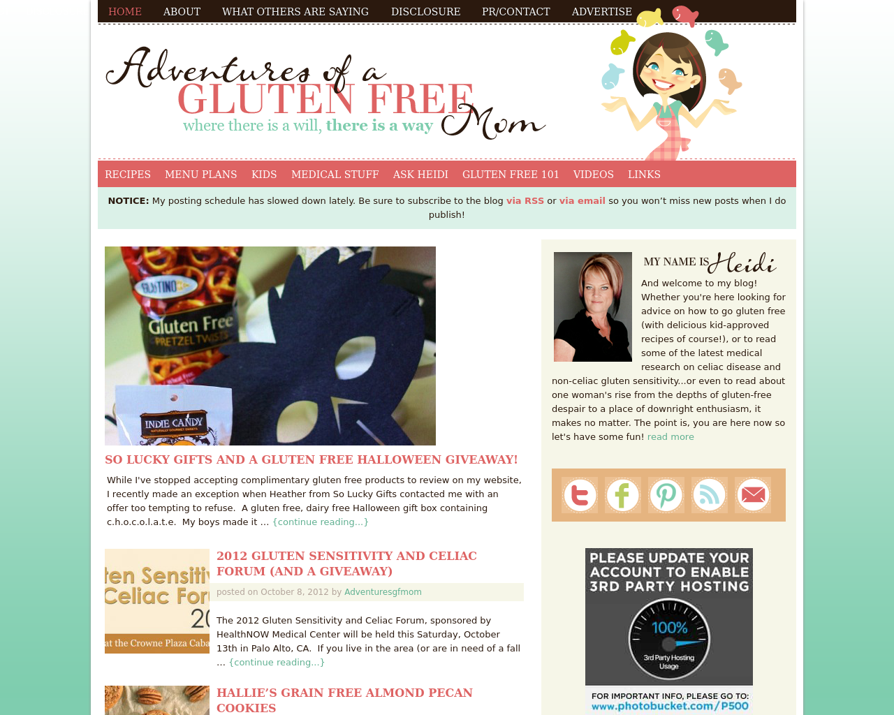 Adventures-Of-A-Gluten-Free-Mom-Advertising-Reviews-Pricing