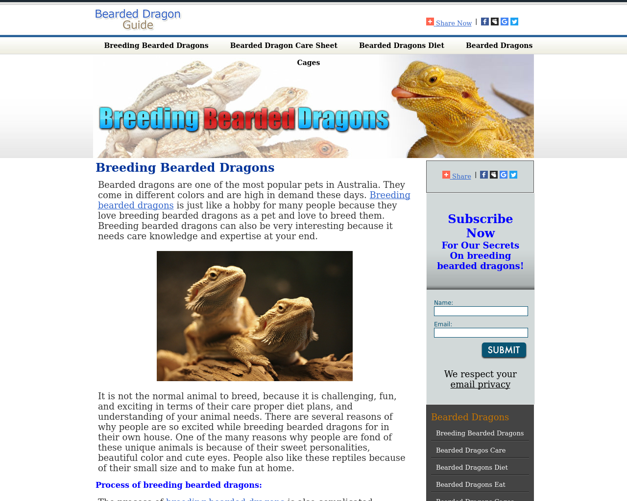 Breeding-Bearded-Dragons-Advertising-Reviews-Pricing