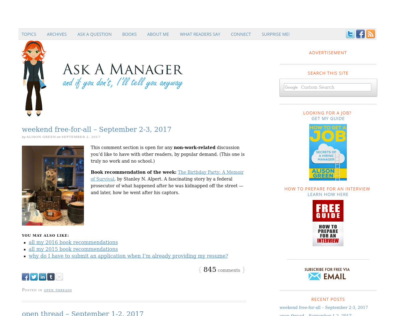 Ask-A-Manager-Advertising-Reviews-Pricing