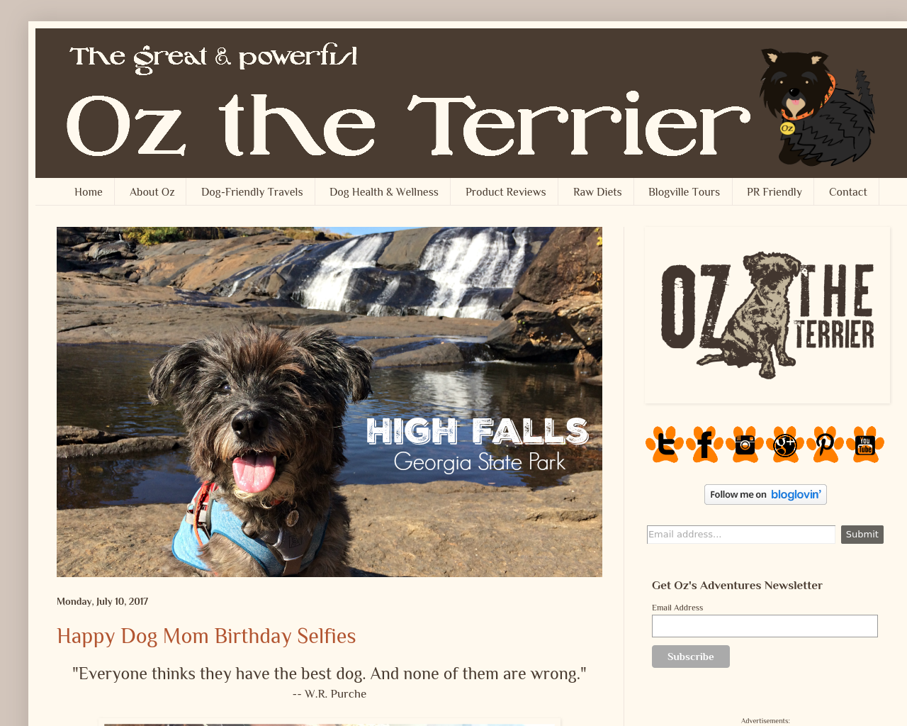 Oz-the-Terrier-Advertising-Reviews-Pricing