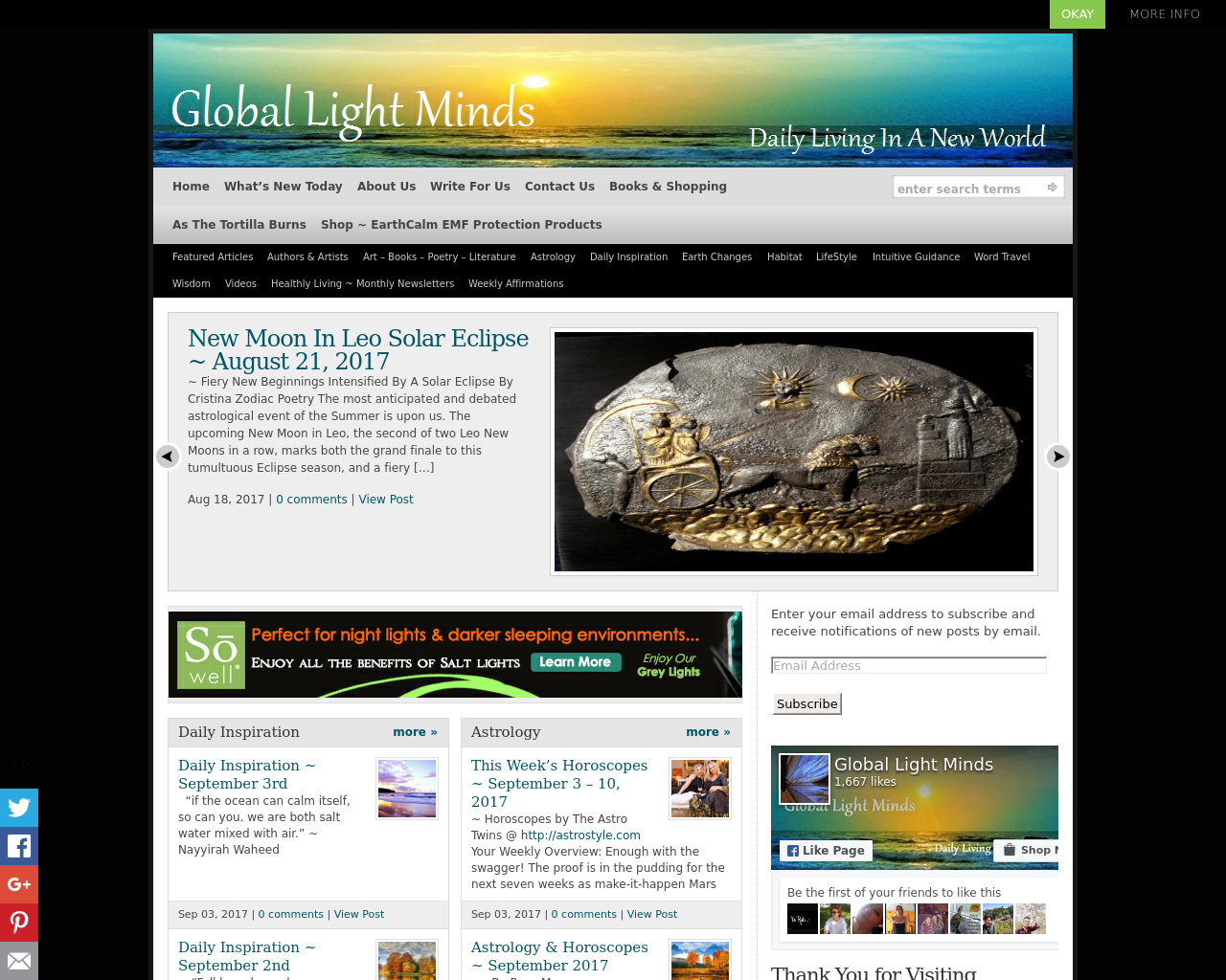 Global-Light-Minds-Advertising-Reviews-Pricing