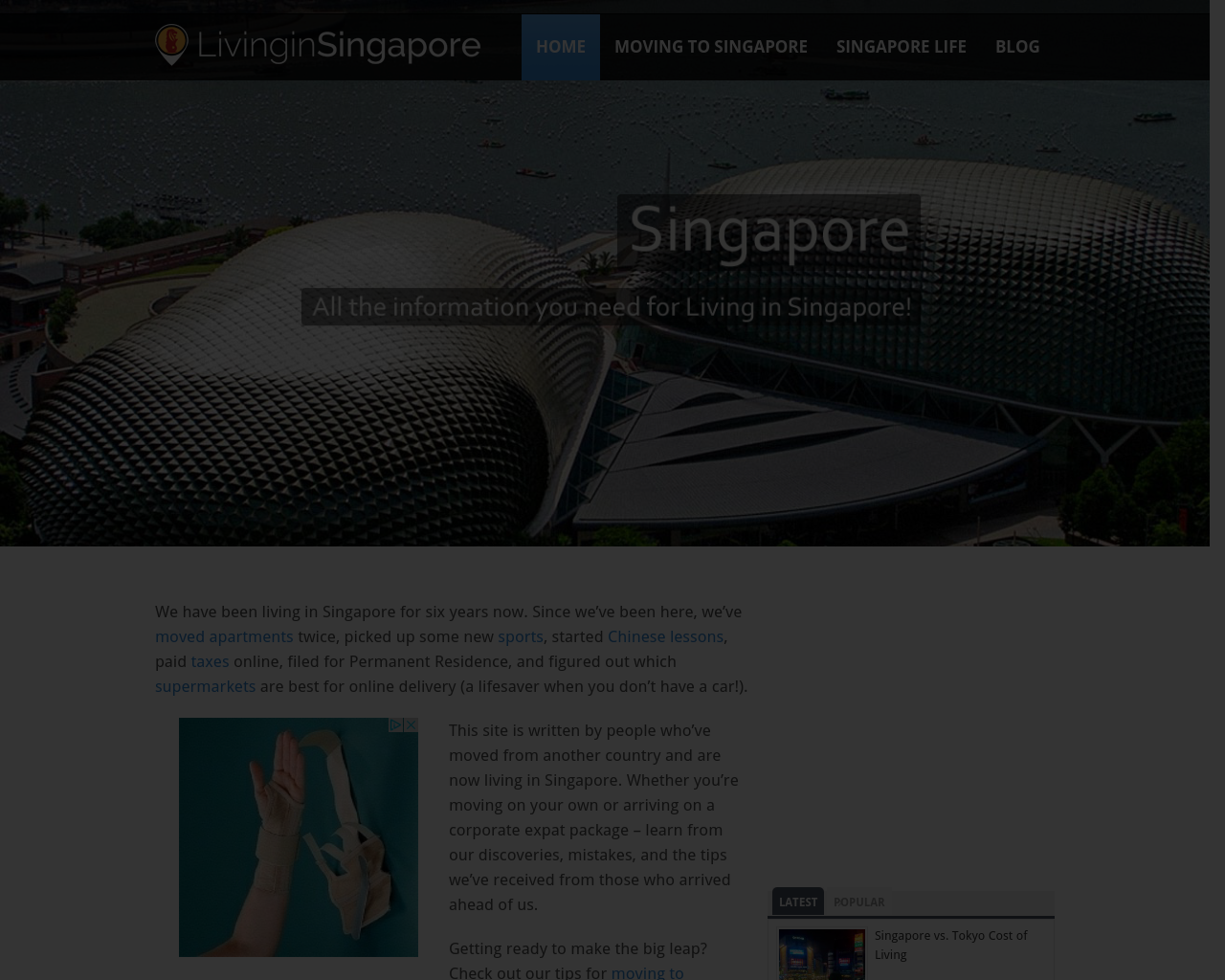 Living-in-Singapore-Advertising-Reviews-Pricing