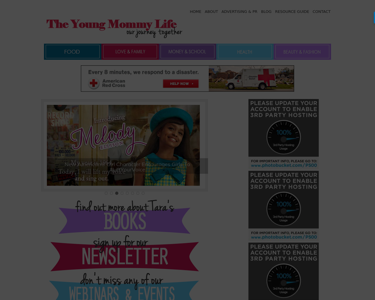The-Young-Mommy-Life-Advertising-Reviews-Pricing