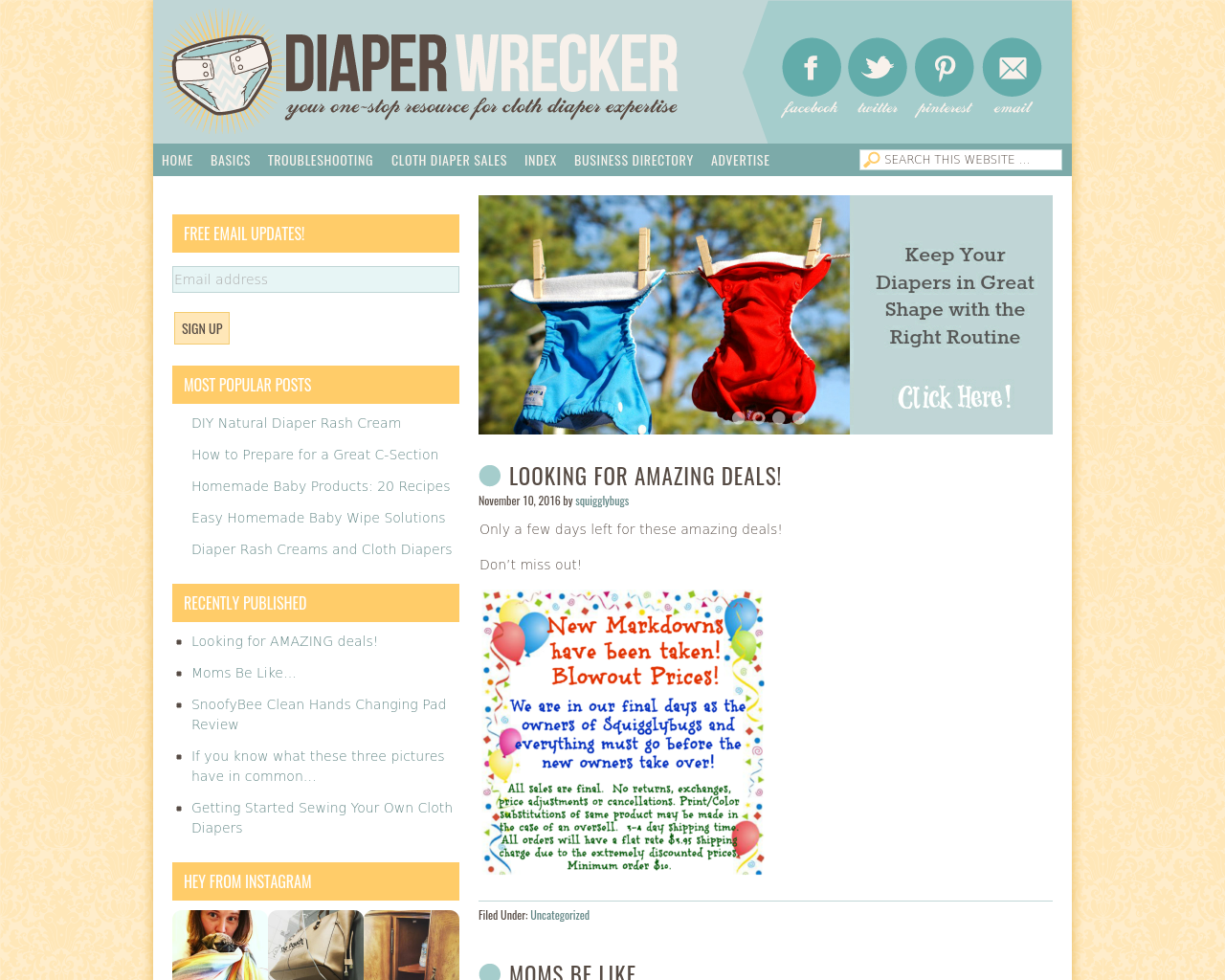 DIAPER-WRECKER-Advertising-Reviews-Pricing