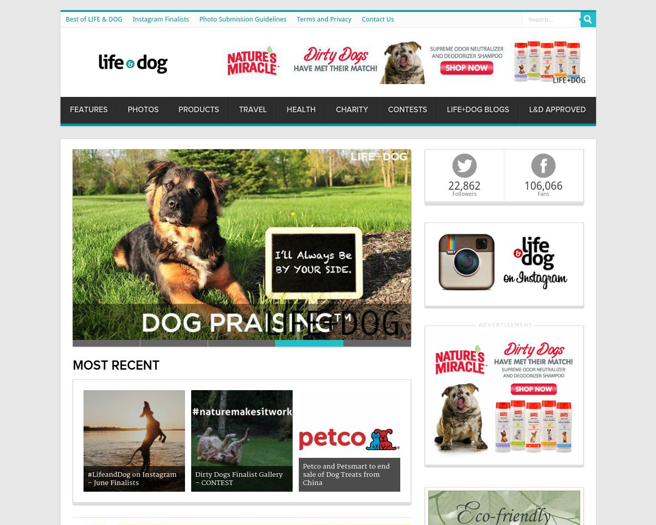 Life-&-Dog-Advertising-Reviews-Pricing