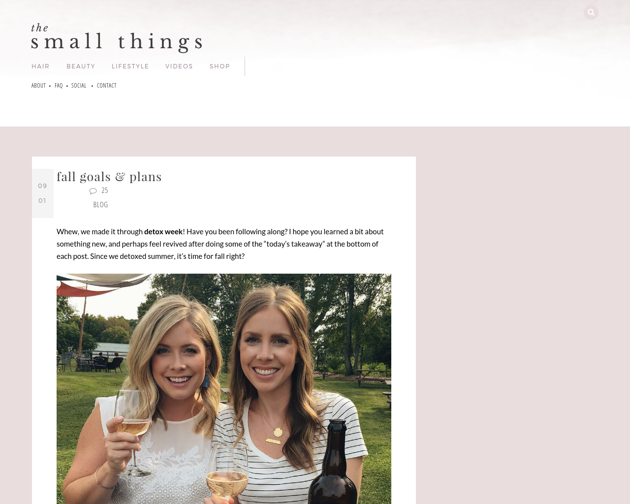 The-Small-Things-Blog-Advertising-Reviews-Pricing