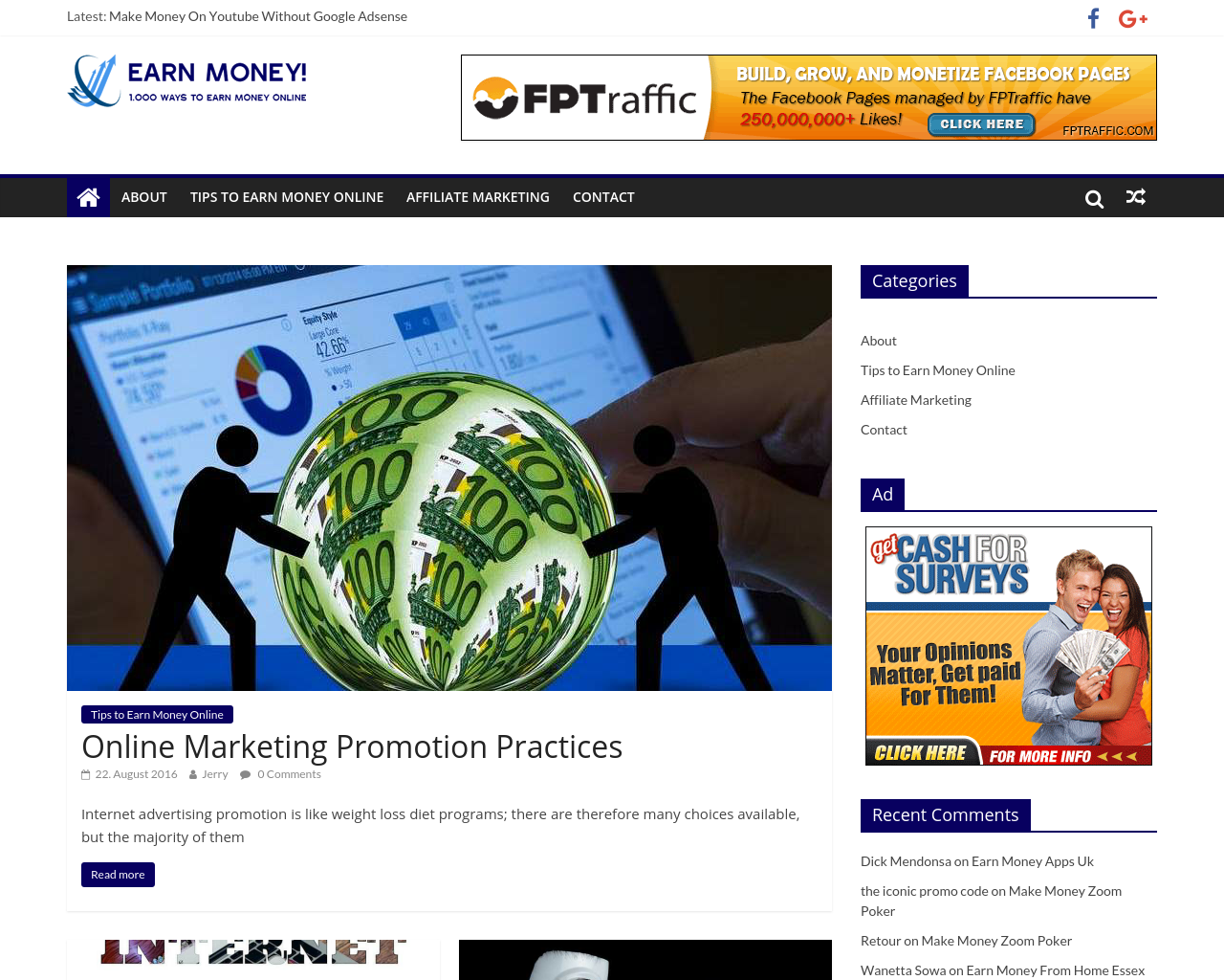 Earn-Money.Net-Advertising-Reviews-Pricing