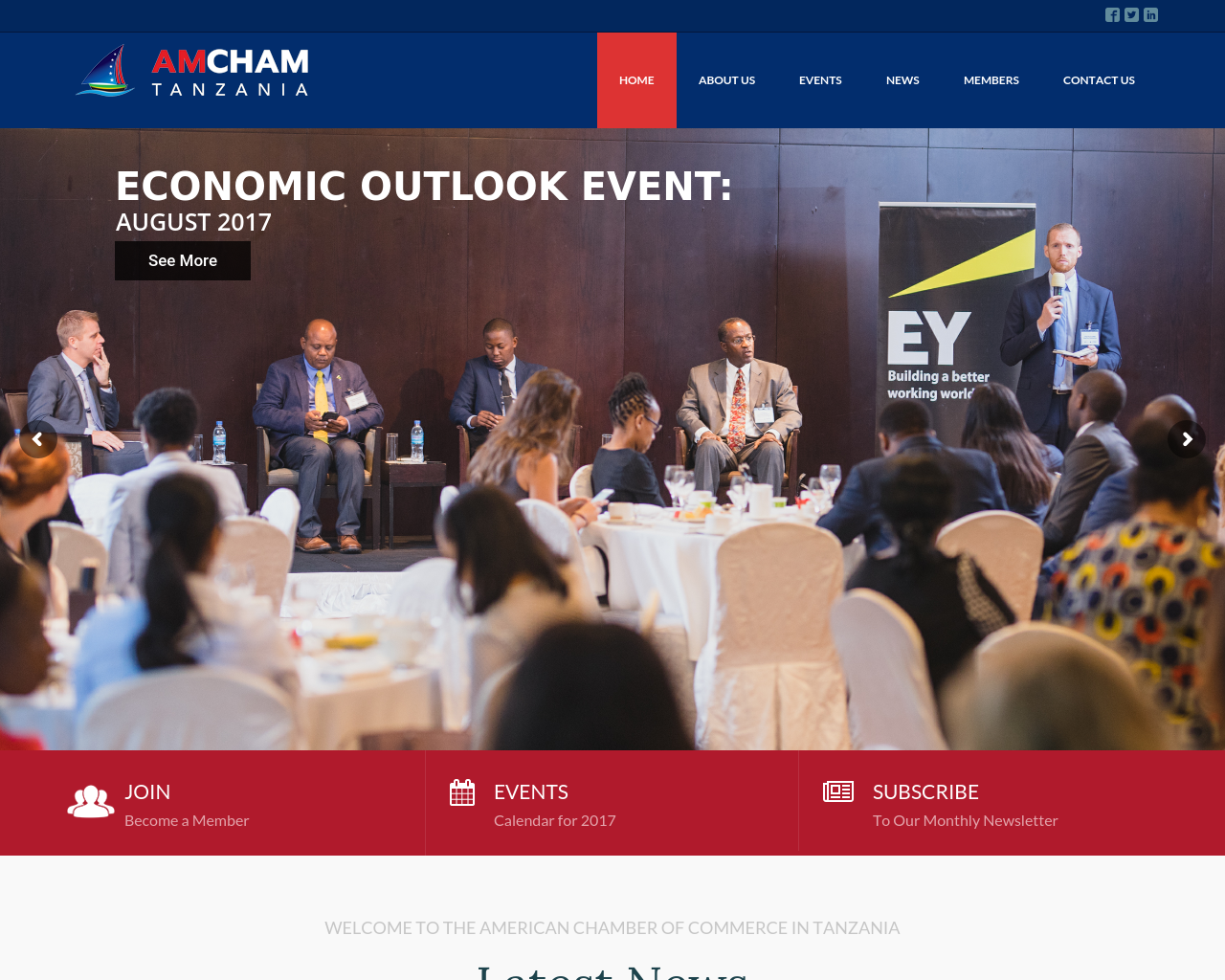 Amcham-tz.com-Advertising-Reviews-Pricing