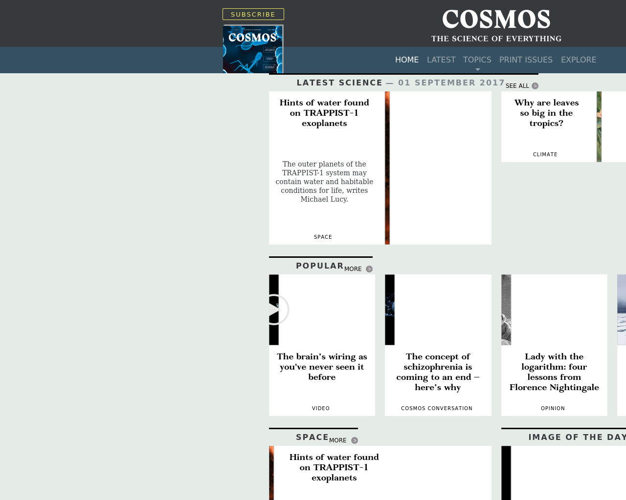 Cosmos-Advertising-Reviews-Pricing