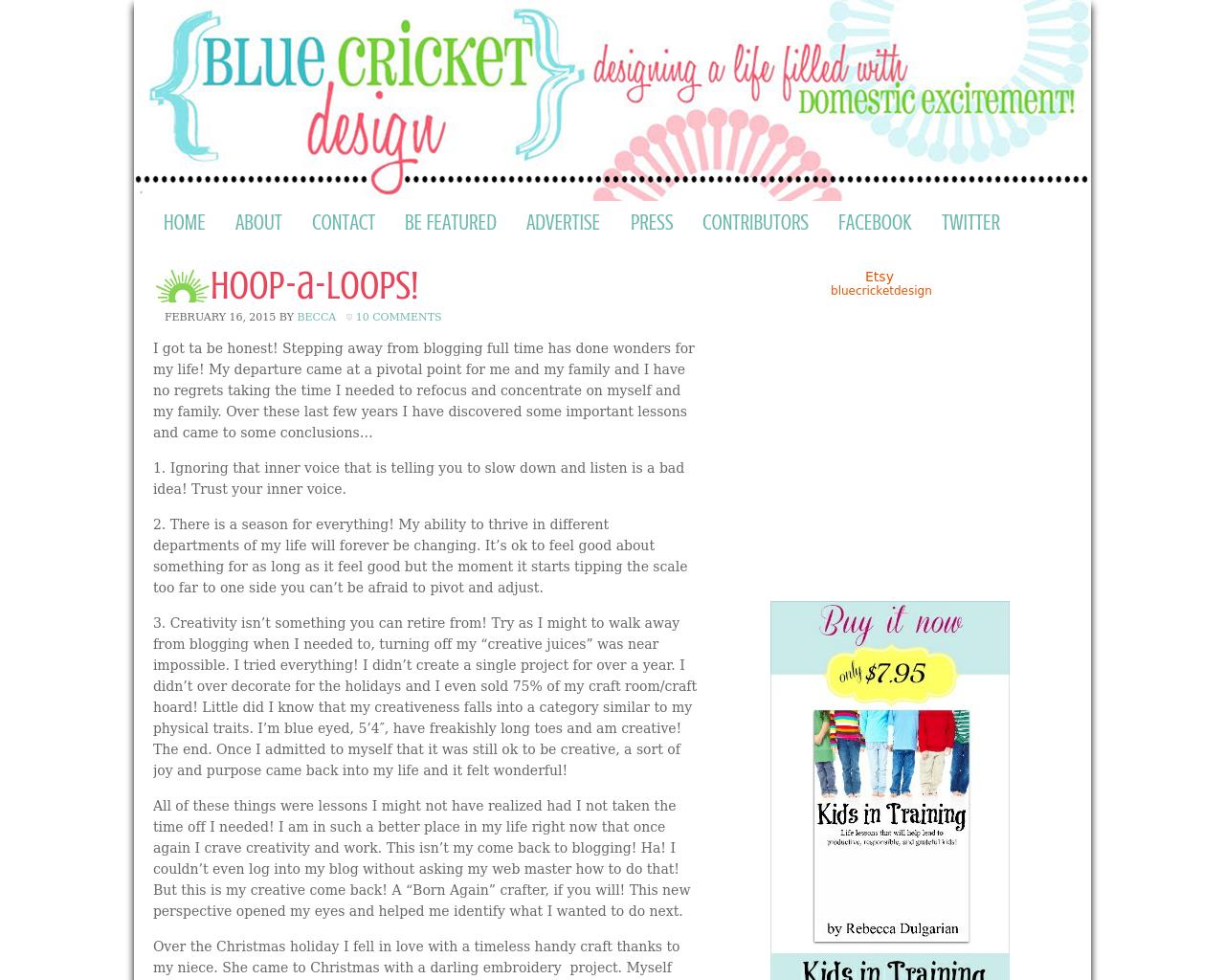 Bluec-Ricket-Design-Advertising-Reviews-Pricing