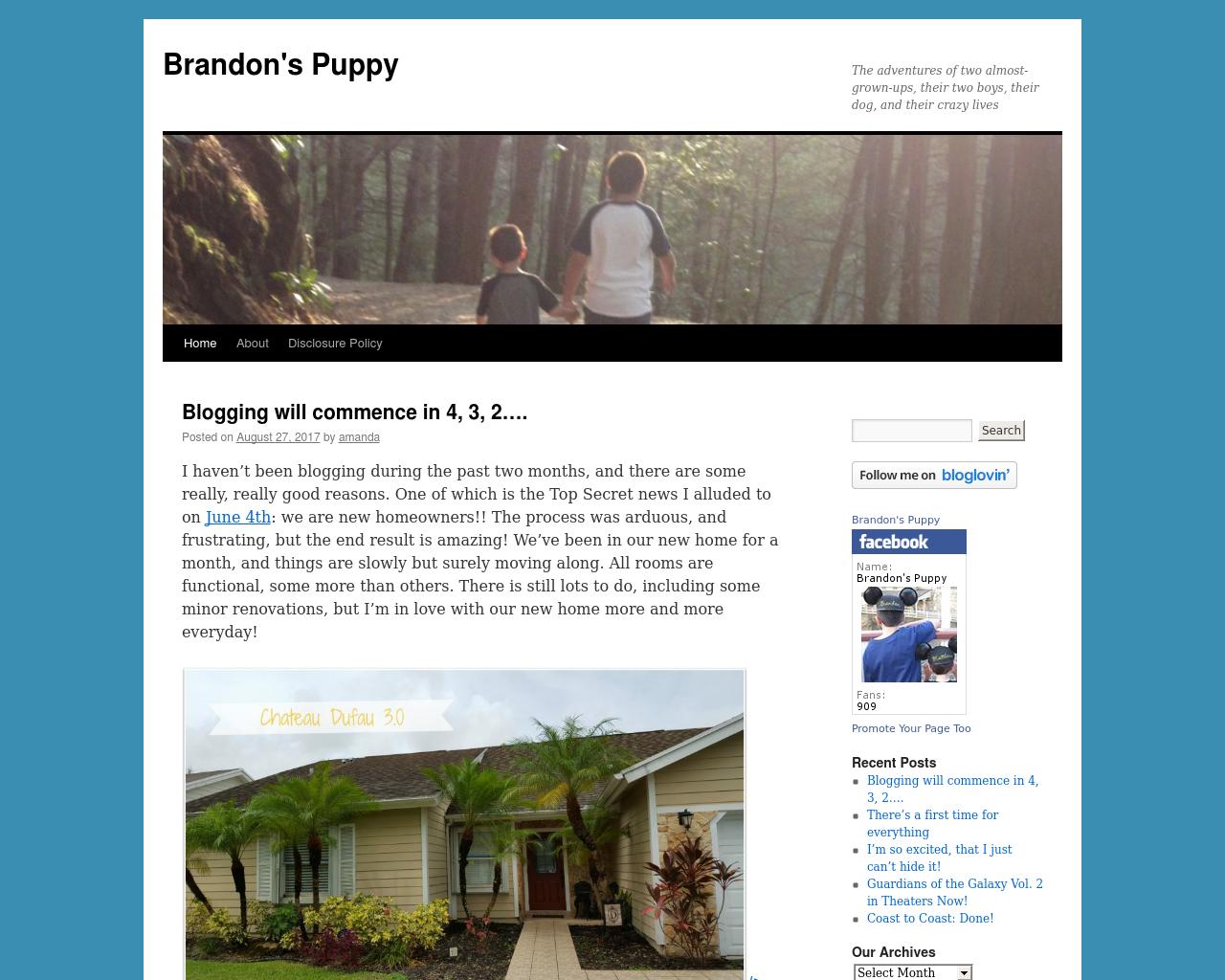 Brandon's-Puppy-Advertising-Reviews-Pricing
