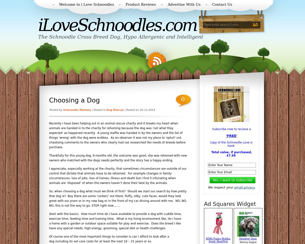 iloveschnoodles.com-Advertising-Reviews-Pricing