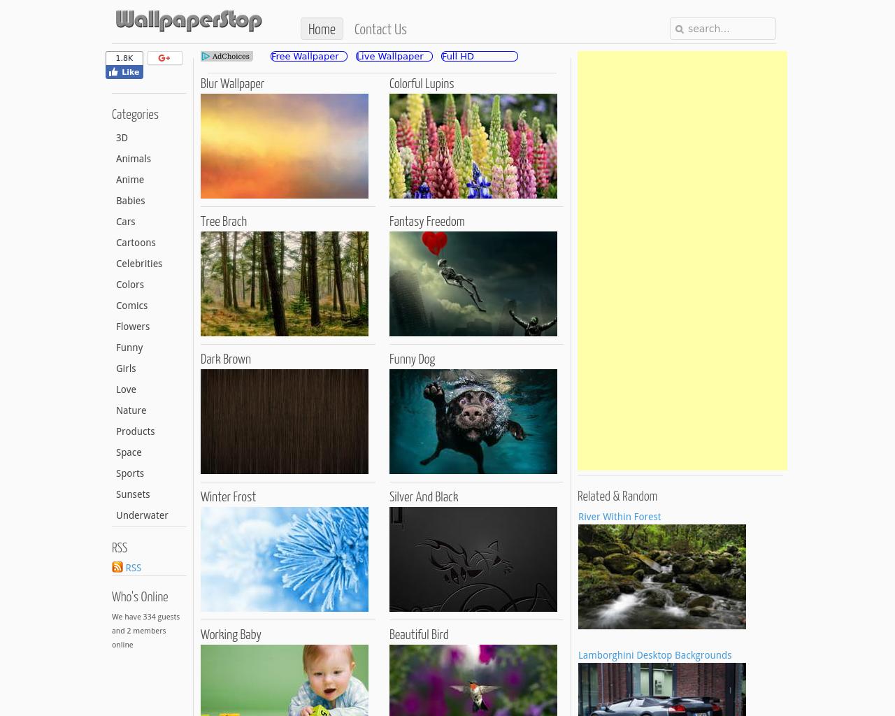 WallpaperStop-Advertising-Reviews-Pricing