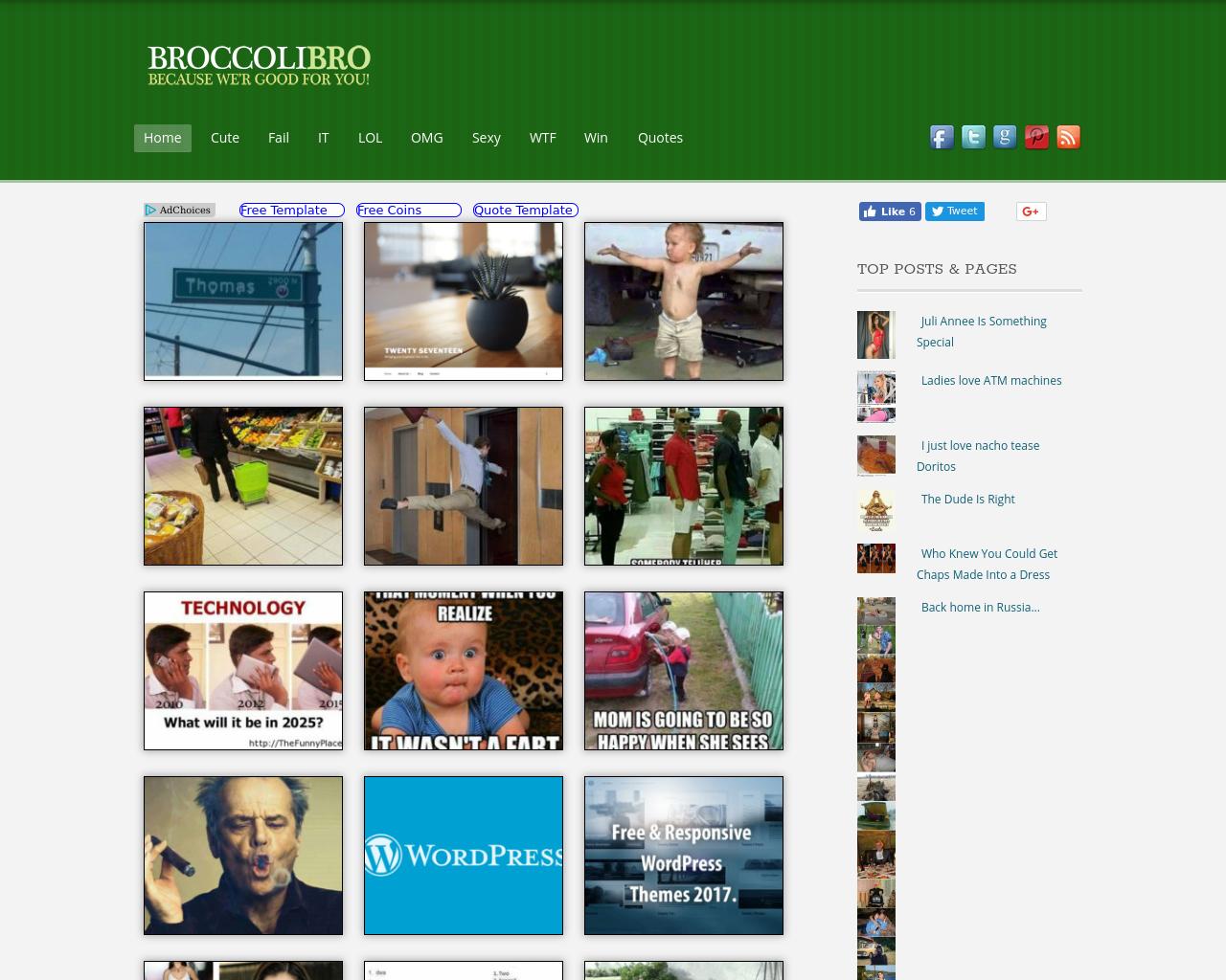 BroccoliBro-Advertising-Reviews-Pricing