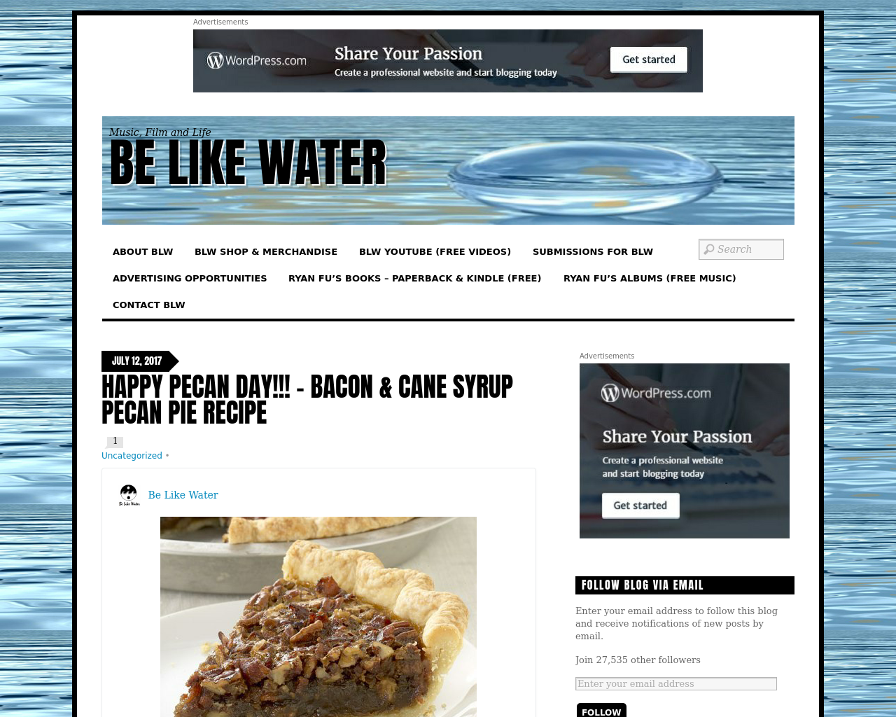 Be-Like-Water-Advertising-Reviews-Pricing