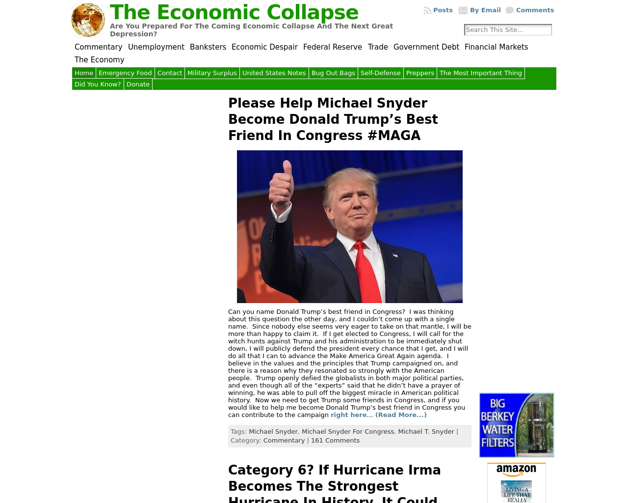 The-Economic-Collapse-Advertising-Reviews-Pricing