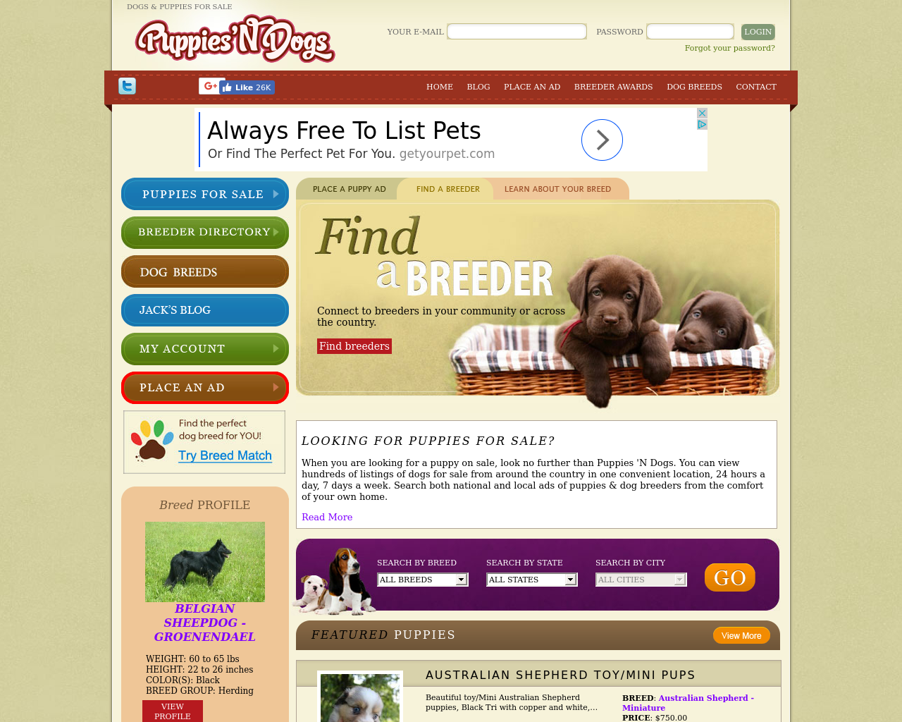 Puppies-N-Dogs-Advertising-Reviews-Pricing