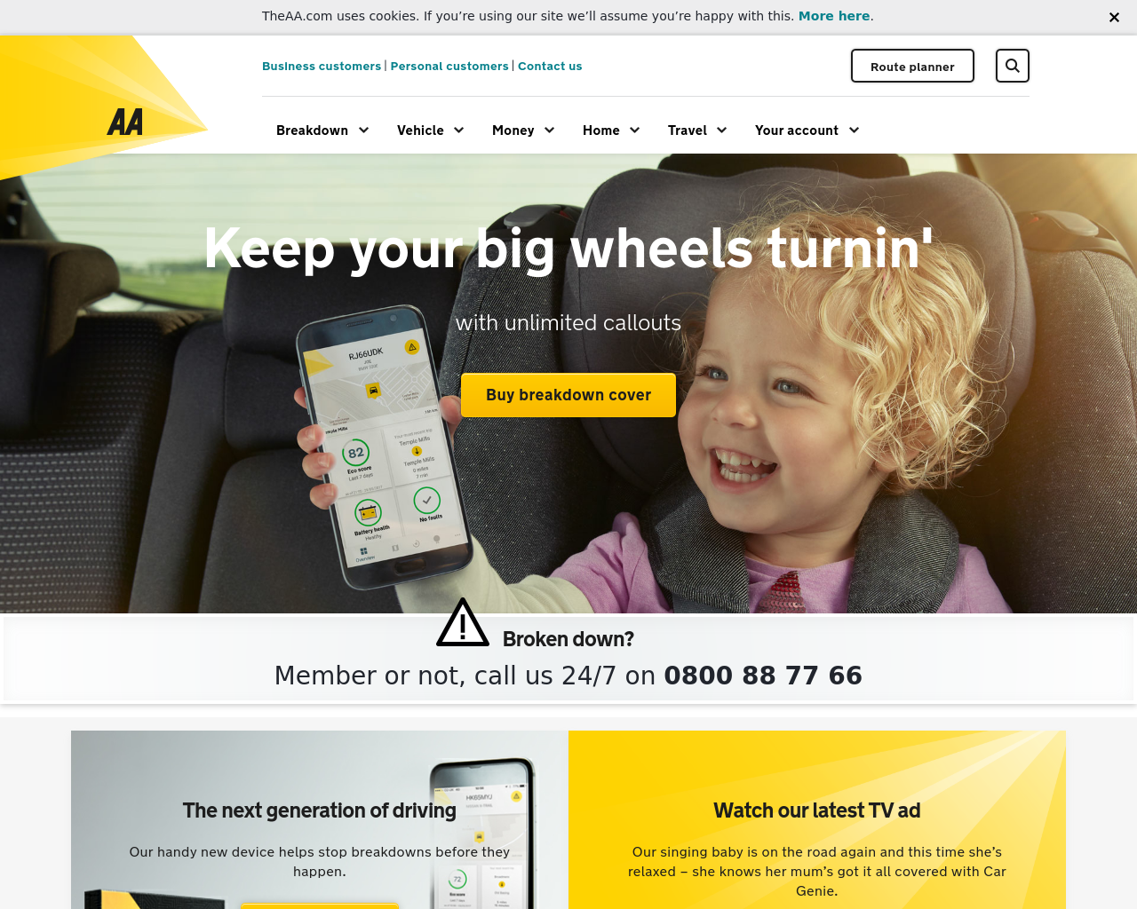 TheAA-Advertising-Reviews-Pricing