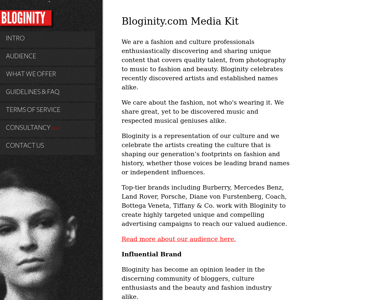 Bloginity.com-Advertising-Reviews-Pricing