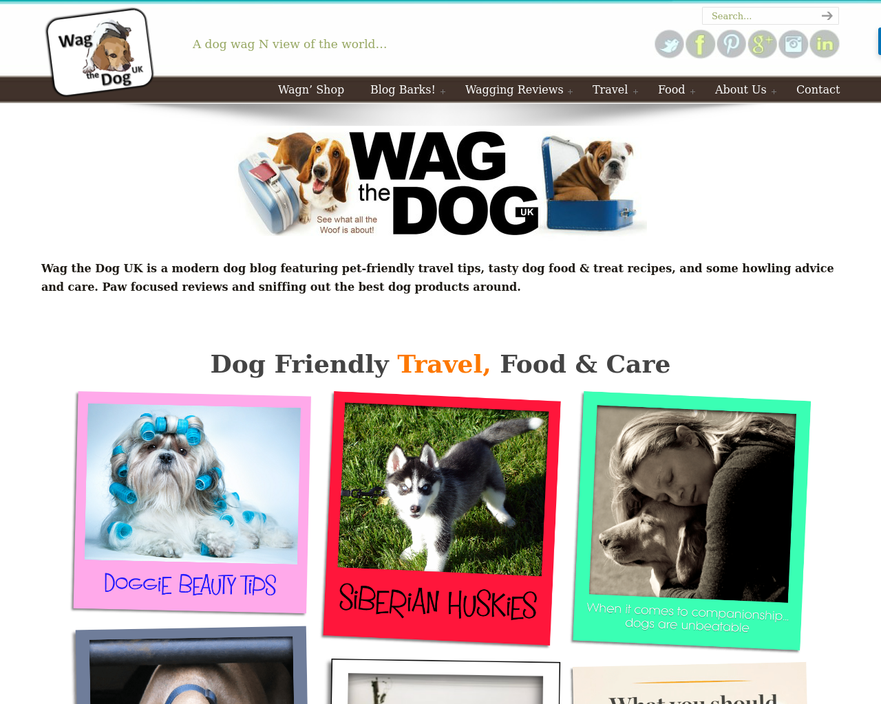 Wag-The-Dog-UK-Advertising-Reviews-Pricing