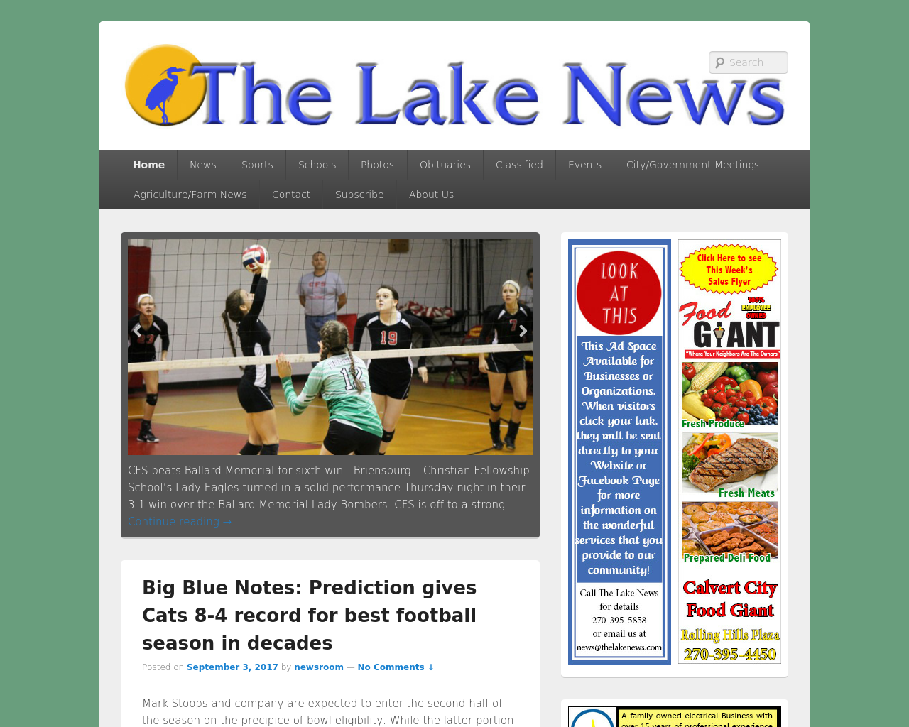 The-Lake-News-Advertising-Reviews-Pricing