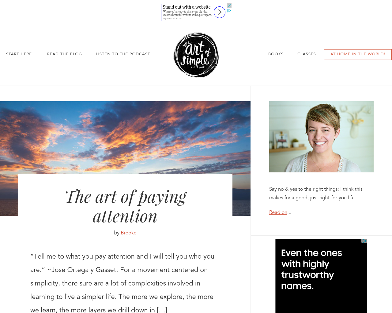 The-Art-of-Simple-Advertising-Reviews-Pricing