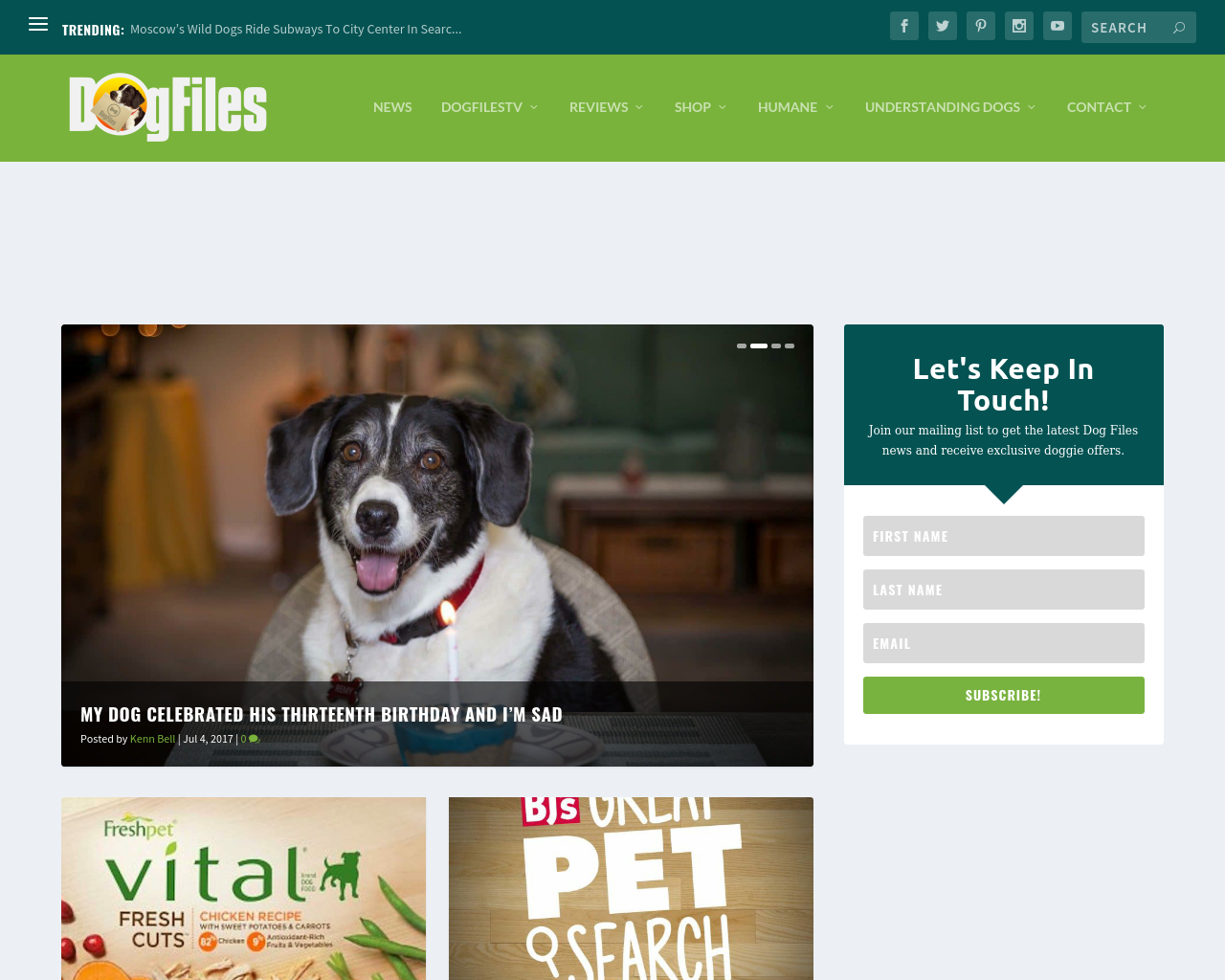 The-Dog-Files-Advertising-Reviews-Pricing