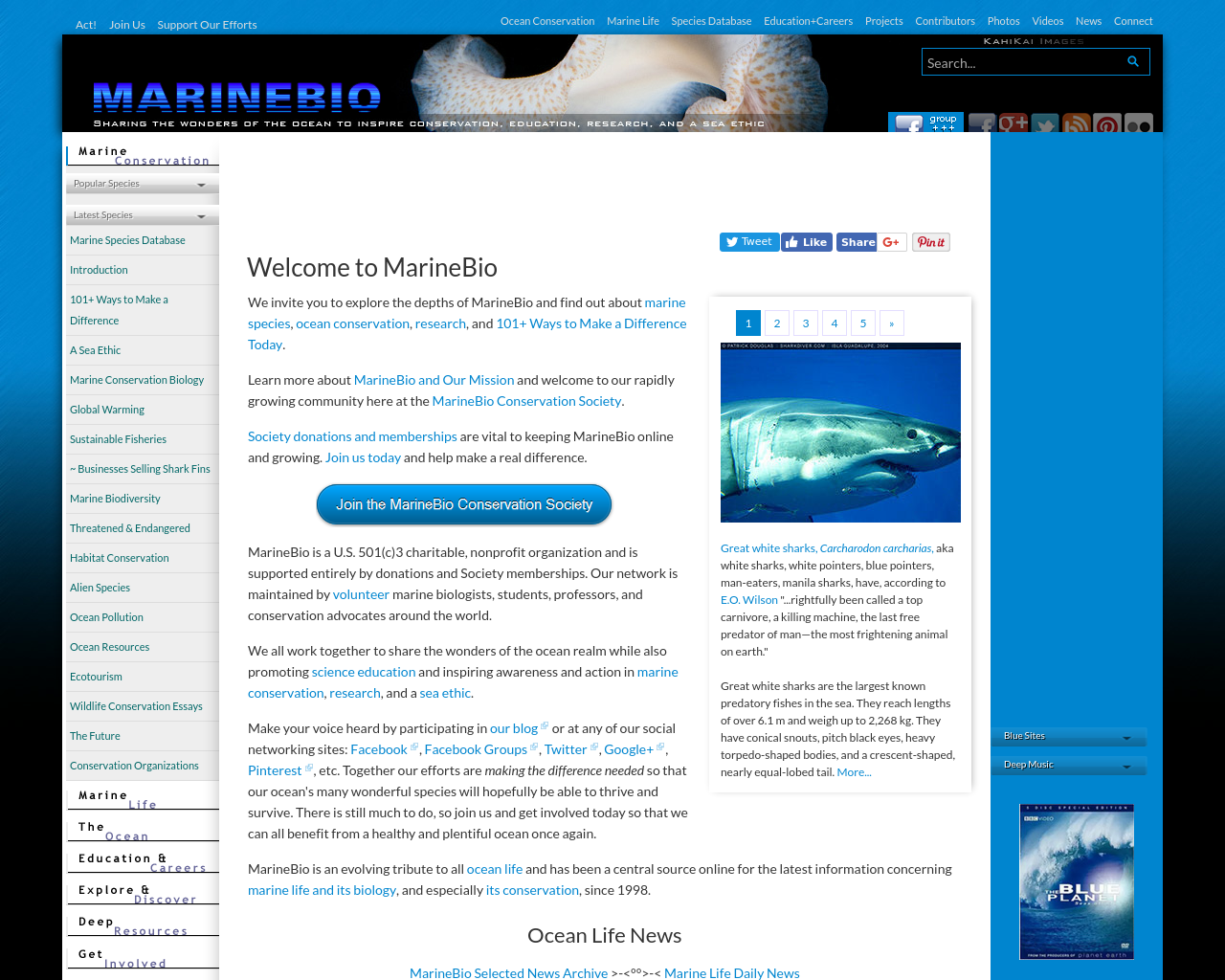 MarineBio-Advertising-Reviews-Pricing
