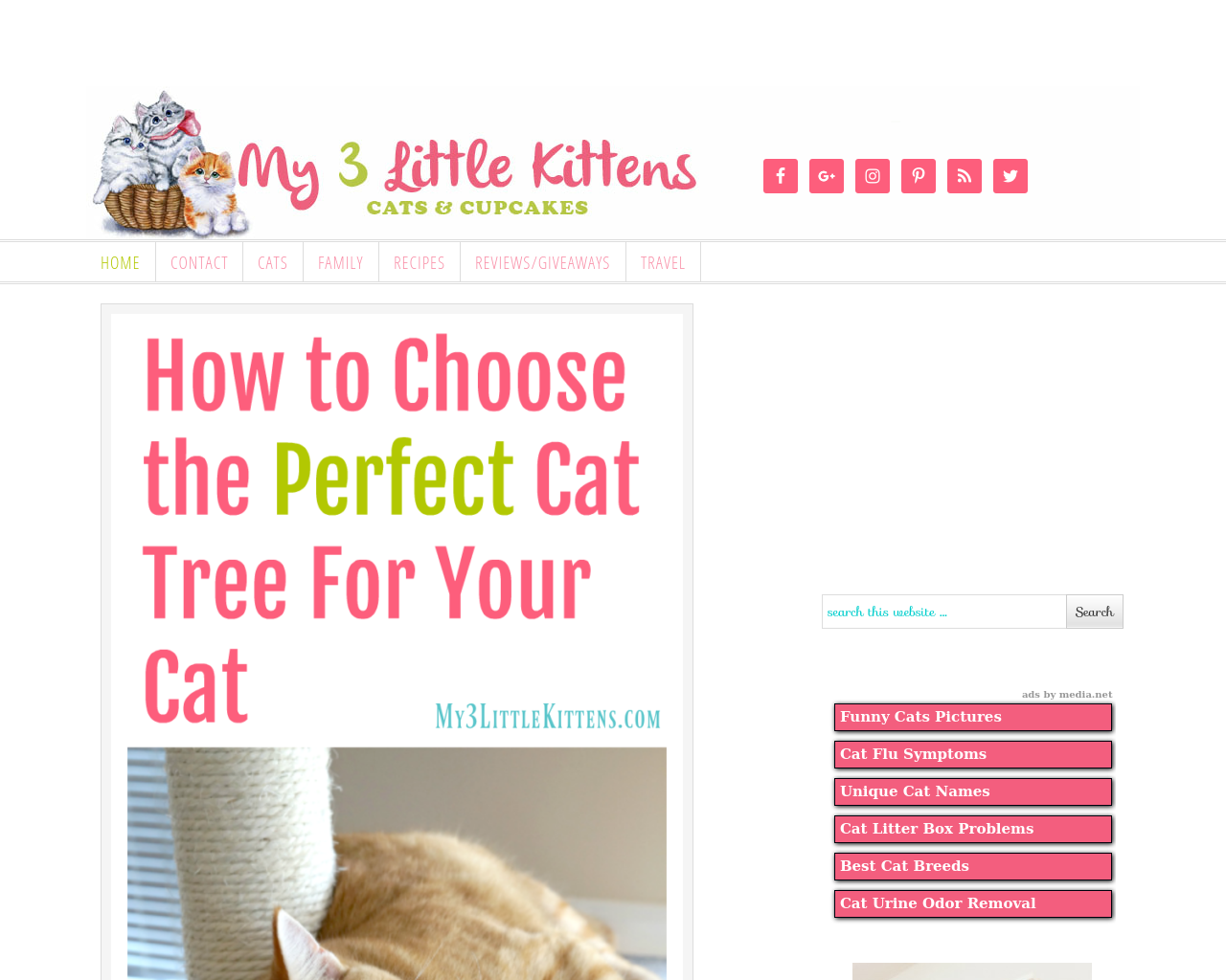My3littlekittens.com-Advertising-Reviews-Pricing