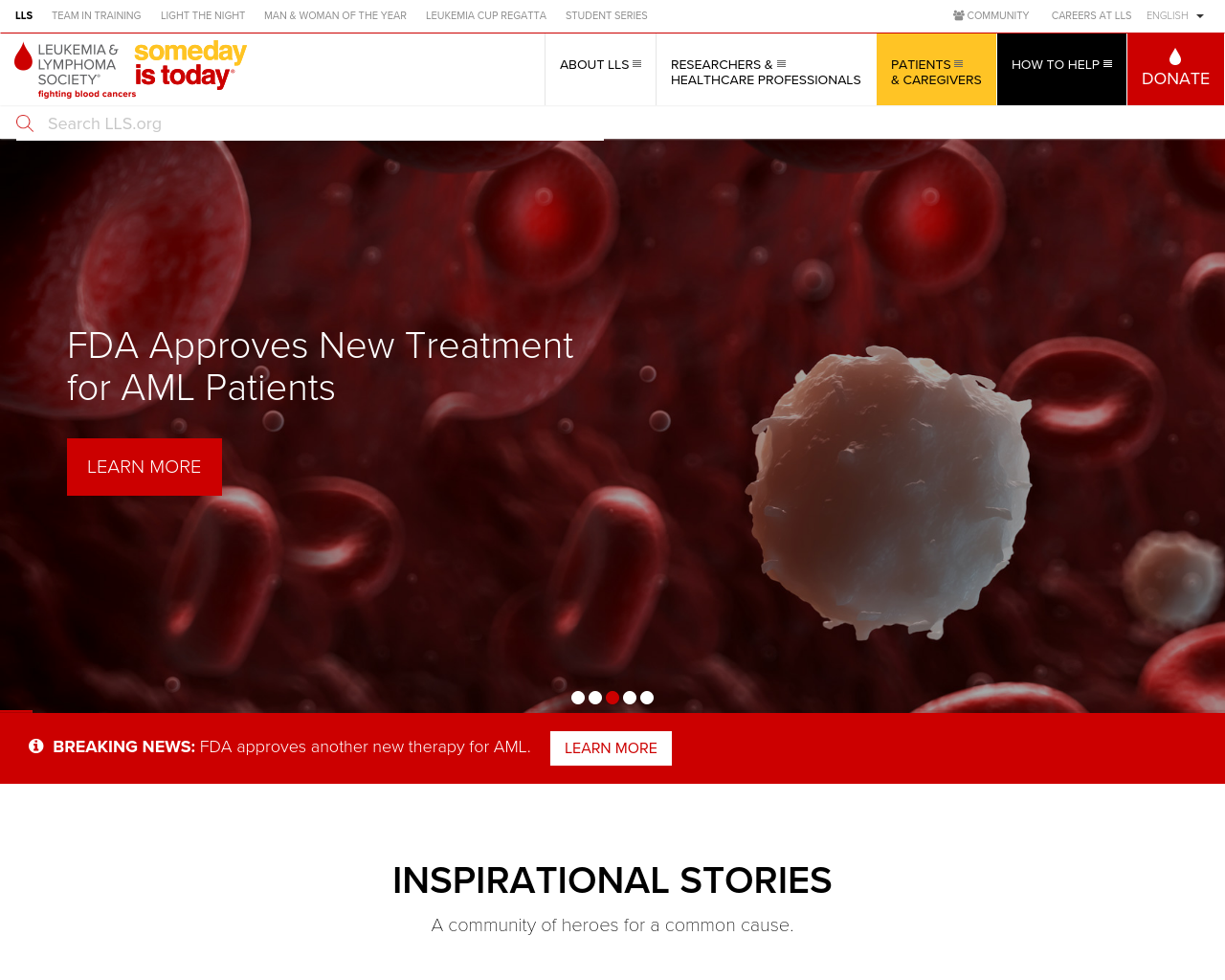 LEUKEMIA-&-LYMPHOMA-SOCIETY-Advertising-Reviews-Pricing