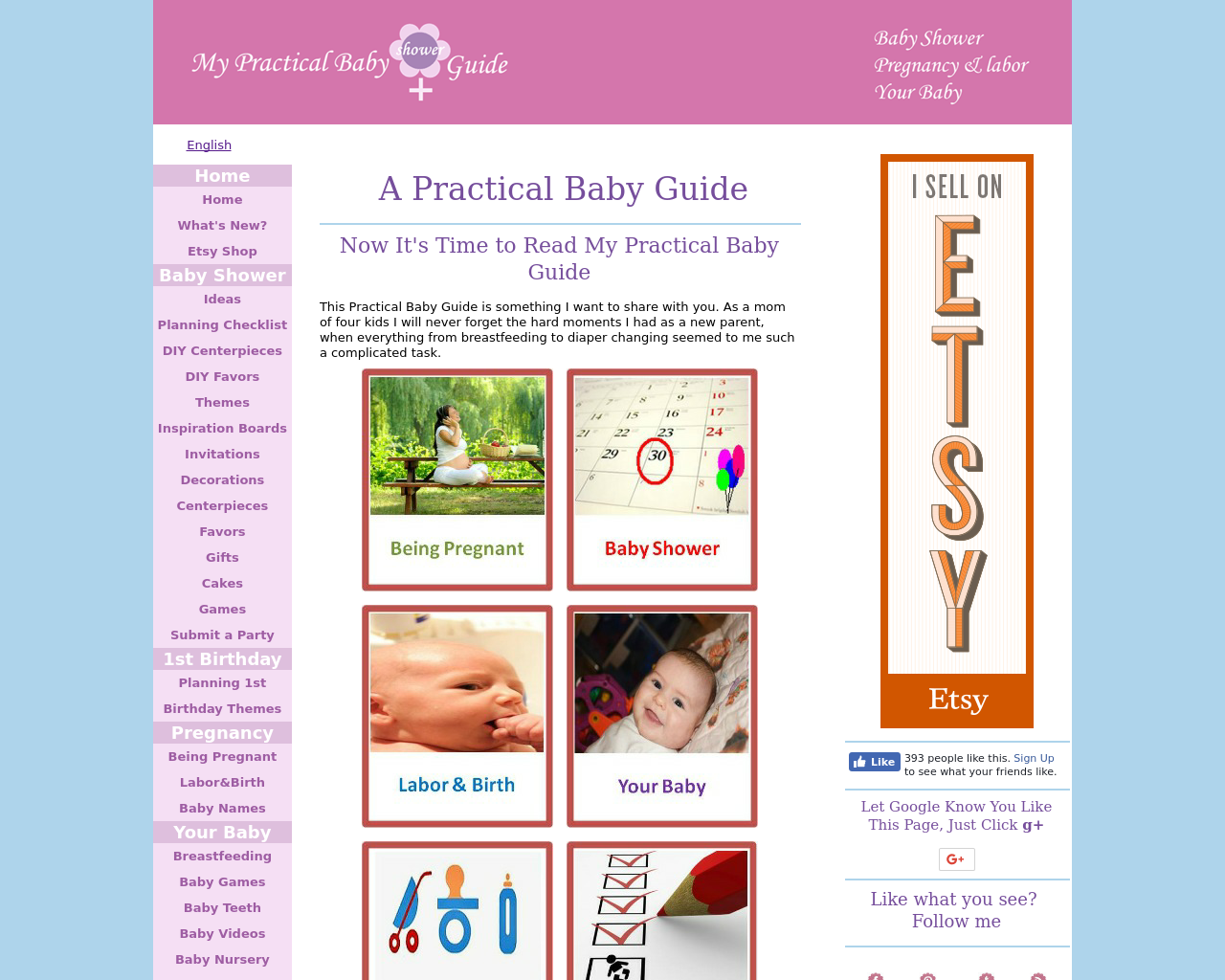 My-Practical-Baby-Guide-Advertising-Reviews-Pricing