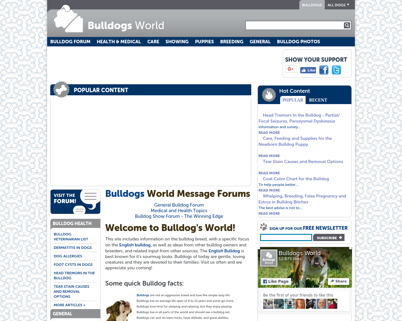 Bulldogs-World-Advertising-Reviews-Pricing