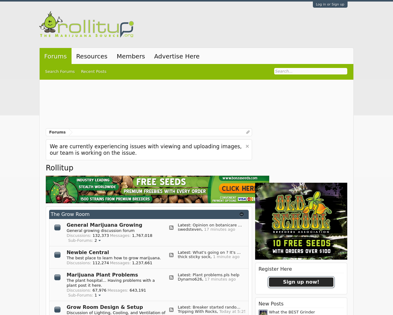 Rollitup-Advertising-Reviews-Pricing