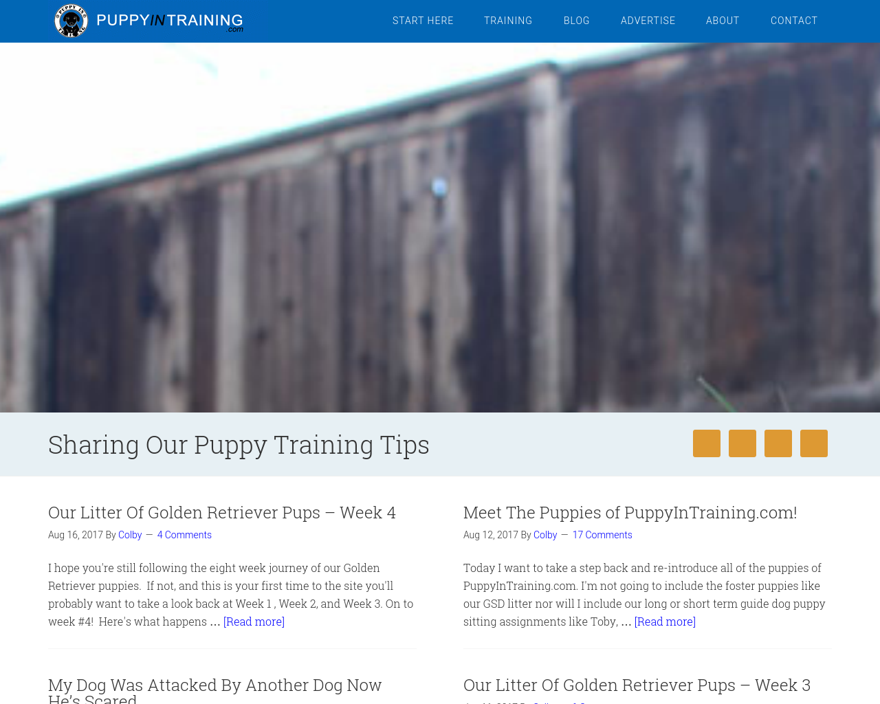 PUPPYINTRAINING.com-Advertising-Reviews-Pricing