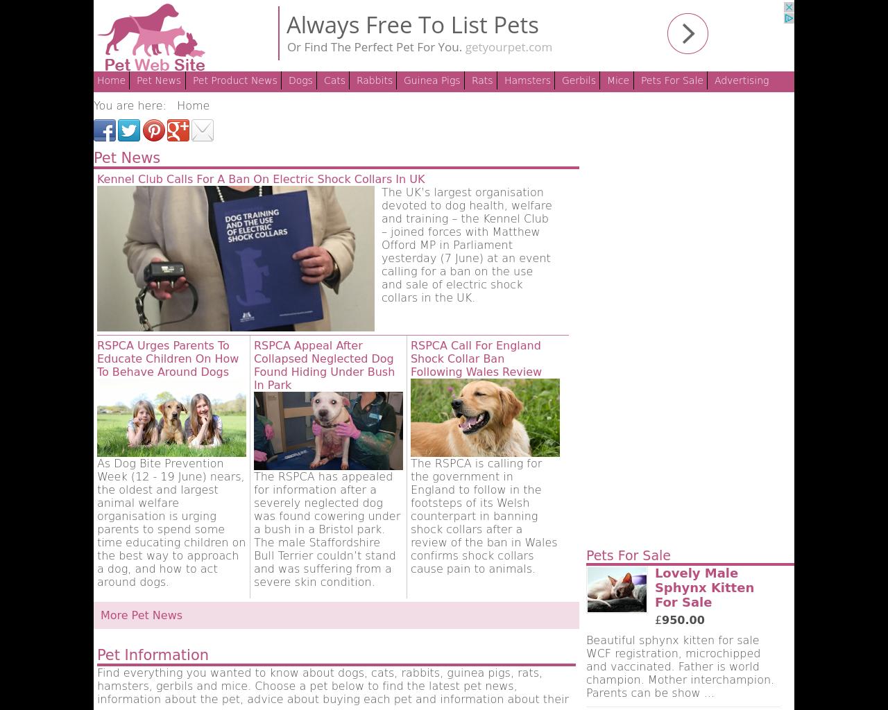 Pet-Web-Site-Advertising-Reviews-Pricing
