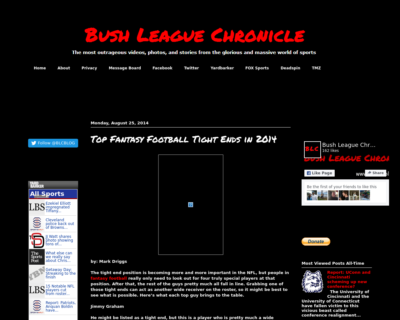 Bush-League-Chronicle-Advertising-Reviews-Pricing