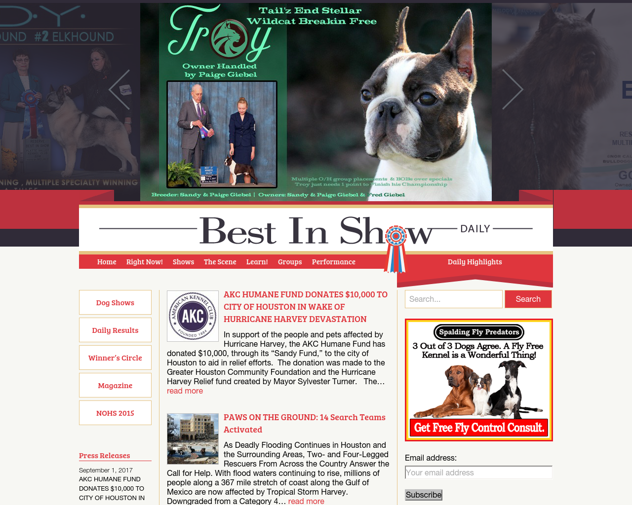 Best-In-Show-Daily-Advertising-Reviews-Pricing