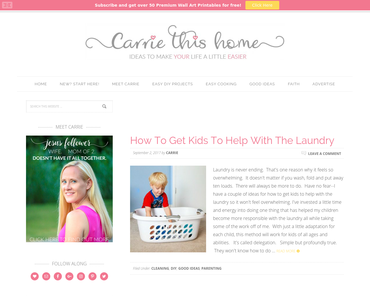 Carrie-This-Home-Advertising-Reviews-Pricing