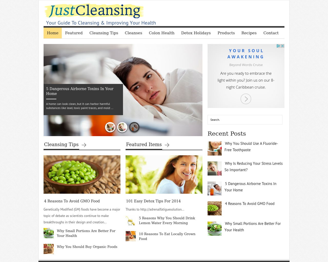 Just-Cleansing-Advertising-Reviews-Pricing