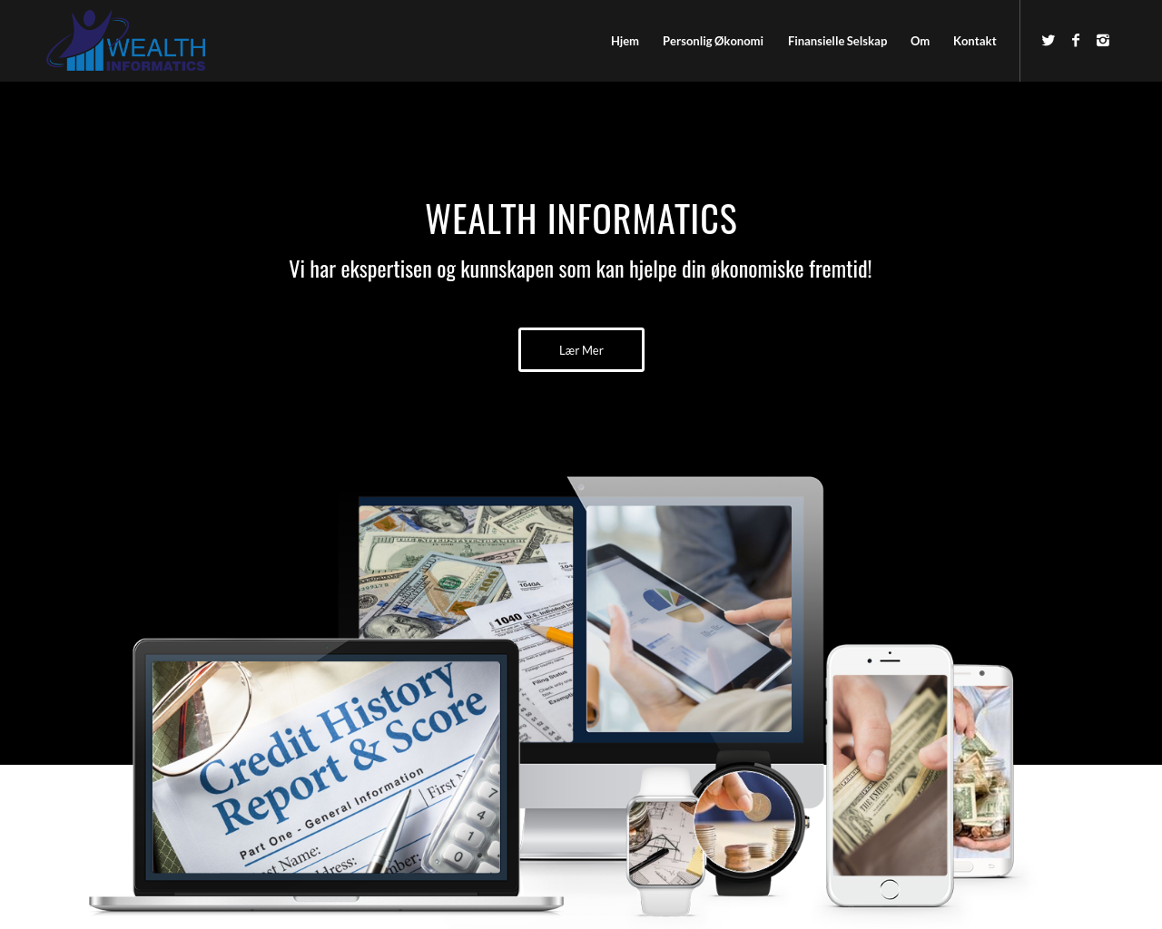 Wealth-Informatics-Advertising-Reviews-Pricing