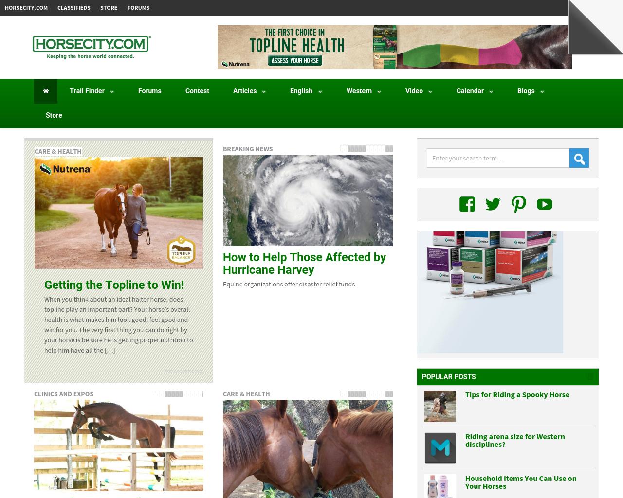 Horsecity.com-Advertising-Reviews-Pricing