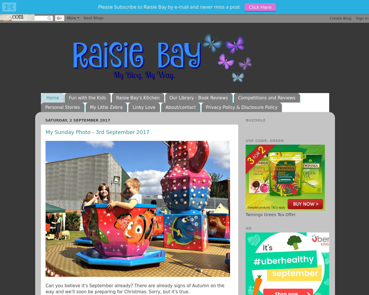 Raisiebay-Advertising-Reviews-Pricing