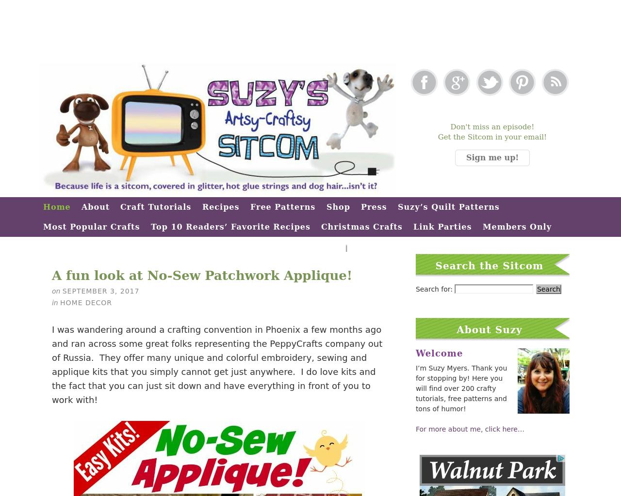 Suzys-Artsy-Craftsy-Sitcom-Advertising-Reviews-Pricing