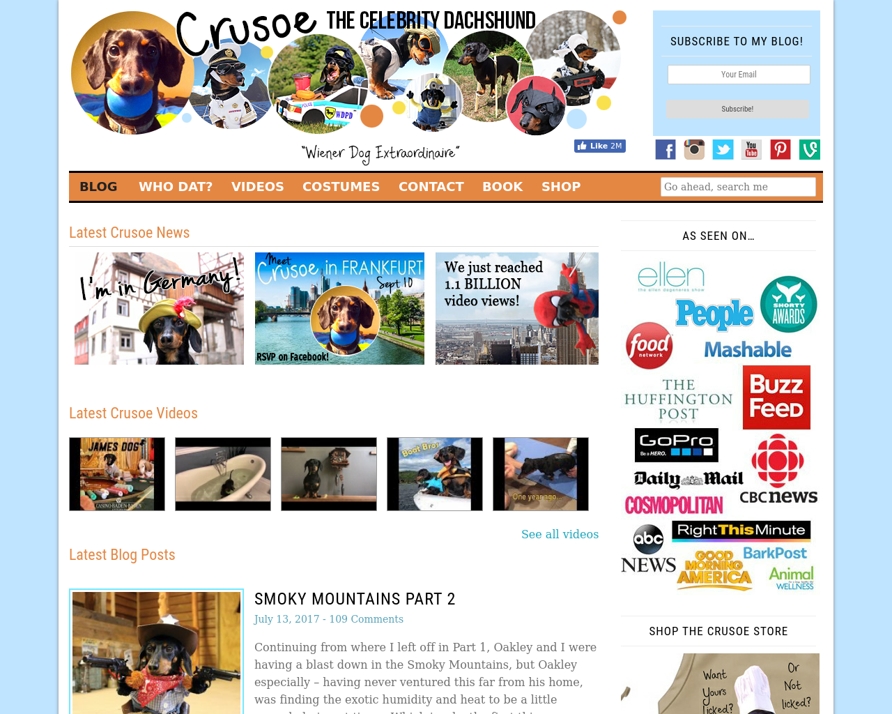 Crusoe-The-Celebrity-Dachshund-Advertising-Reviews-Pricing