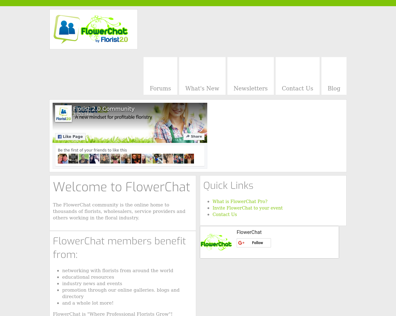 Flower-Chat-Advertising-Reviews-Pricing